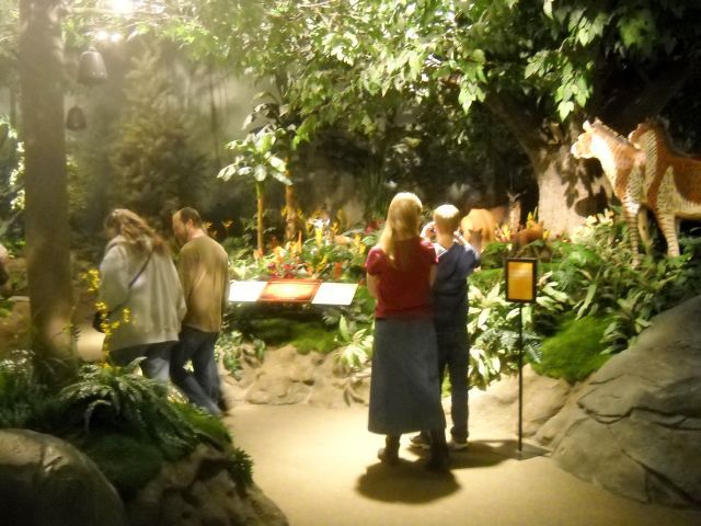 "we always enjoy walking through the ""Garden of Eden"""