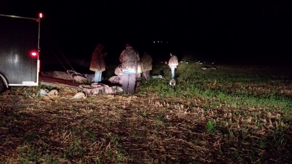 setting up decoys in the dark of morning
